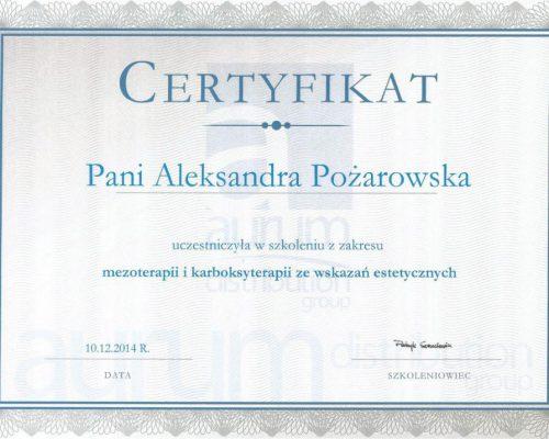 Scan11 1024x716 500x400 Certyfikaty