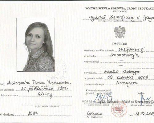 dyplom lic 1024x726 500x400 Certyfikaty
